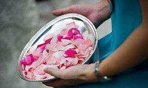 petali-del-fiore-pronti-ad-essere-gettato-20389380
