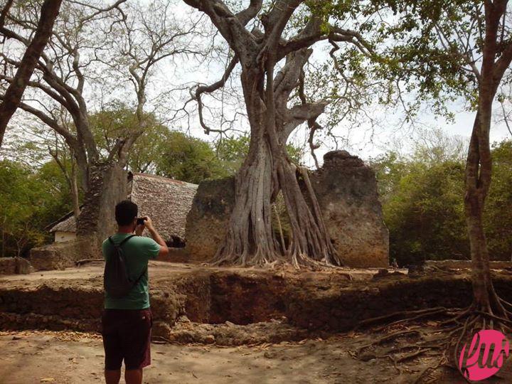 visit-watamu