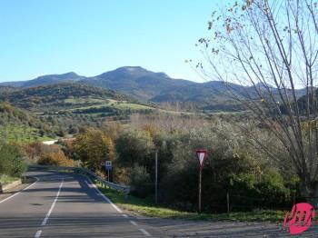 Montiferru-ss292