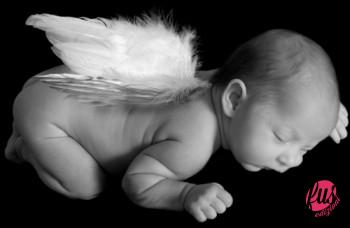 bimbo-angelo