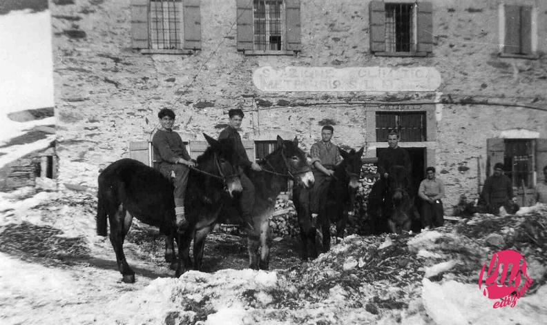 Partigiani-in-montagna-1943