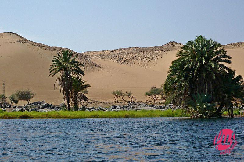Rio_nilo-aswan-2007