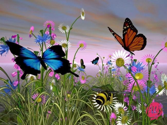 farfalle1