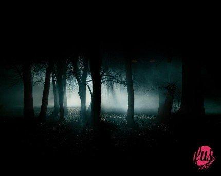 Bosco-di-notte-con-occhi-rossi-robert-johnson