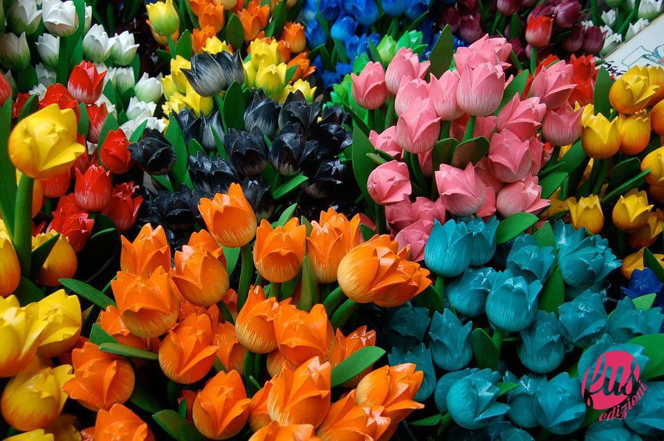 fiori di legno